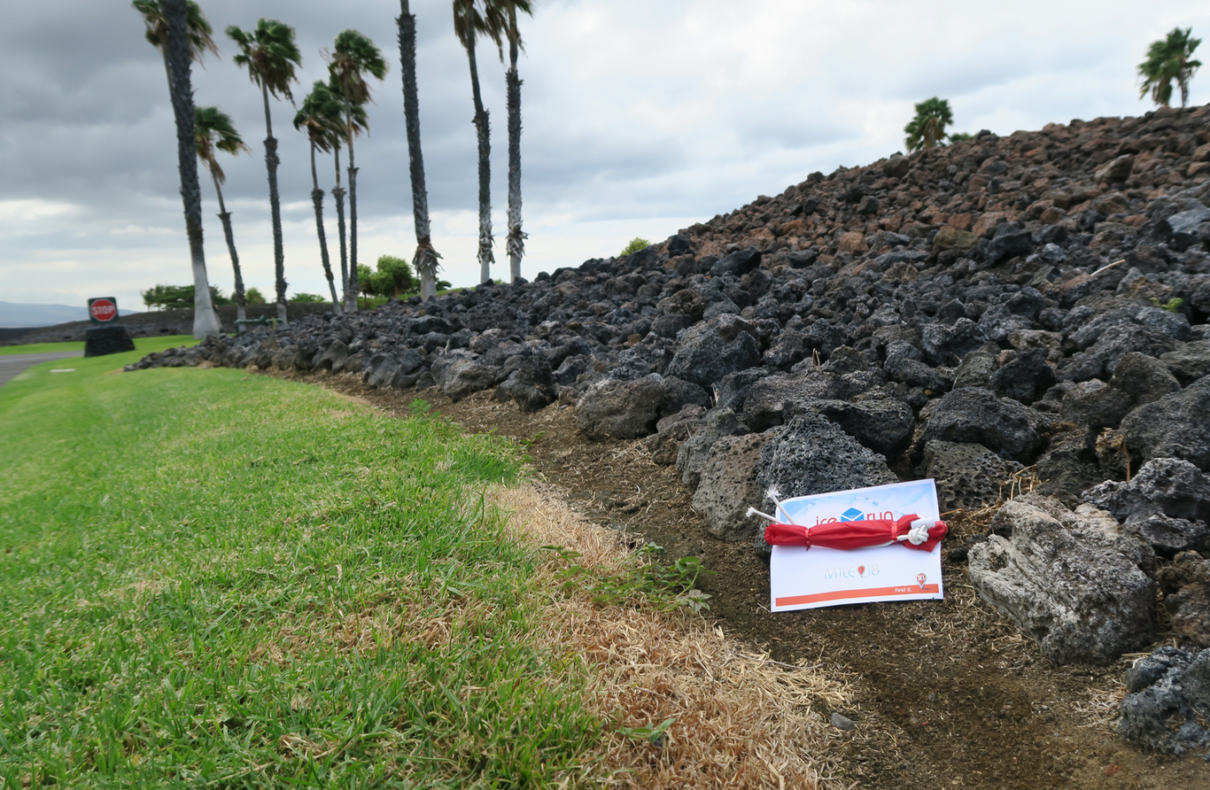 RaceSaver™ Bag On the Ground in Hawaii